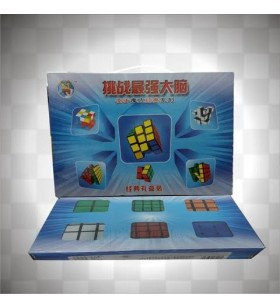 Cubes Shengshou, boîte cadeau 6 cubes