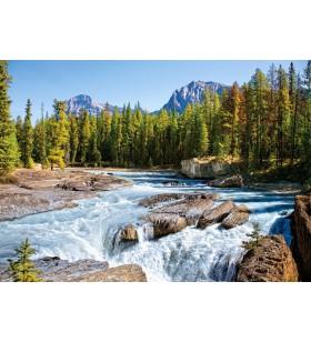 Puzzle 1500 pièces Athabasca River Jasper National Park Canada