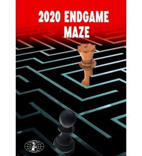 Ivanisevic - 2020 Endgame Maze