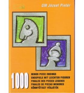 PINTER - 1000 Minor Piece...