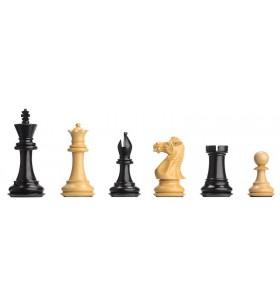 Electronic chess pieces DGT...